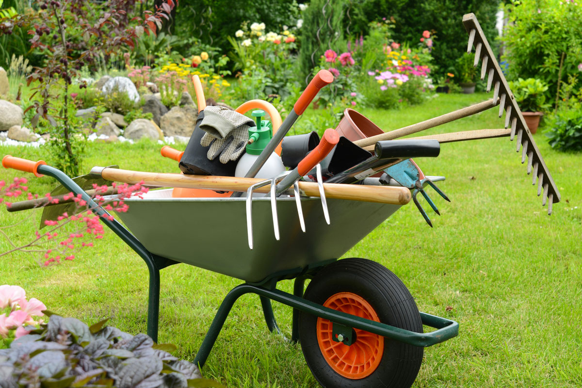 giardinaggio trento e provincia artigiano casa tua