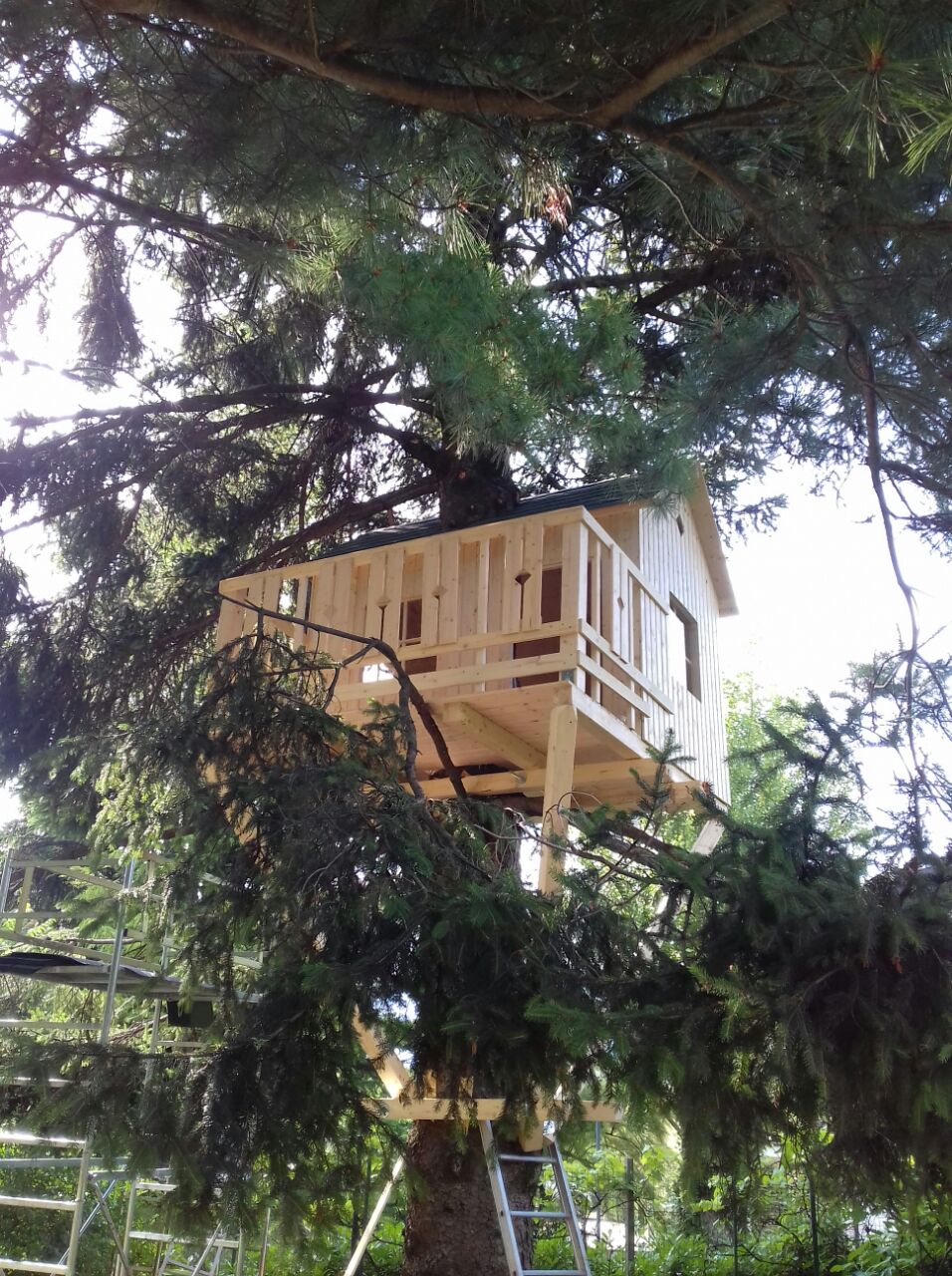 Casa albero trento artigiano casa tua for La tua casa trento